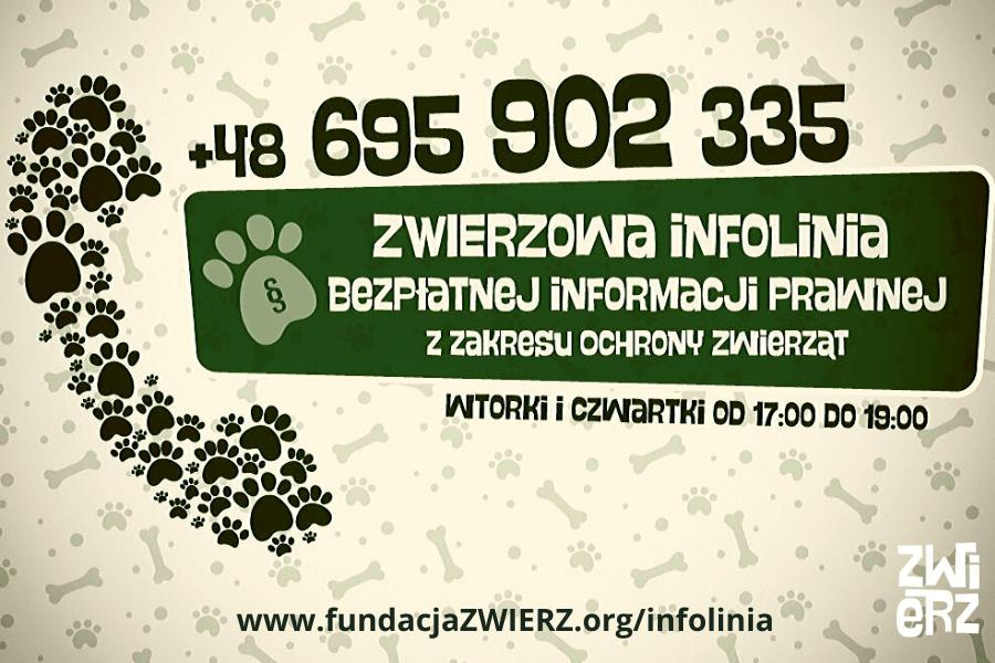 info_infolinia