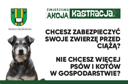 grafika_zak_ulotka_2